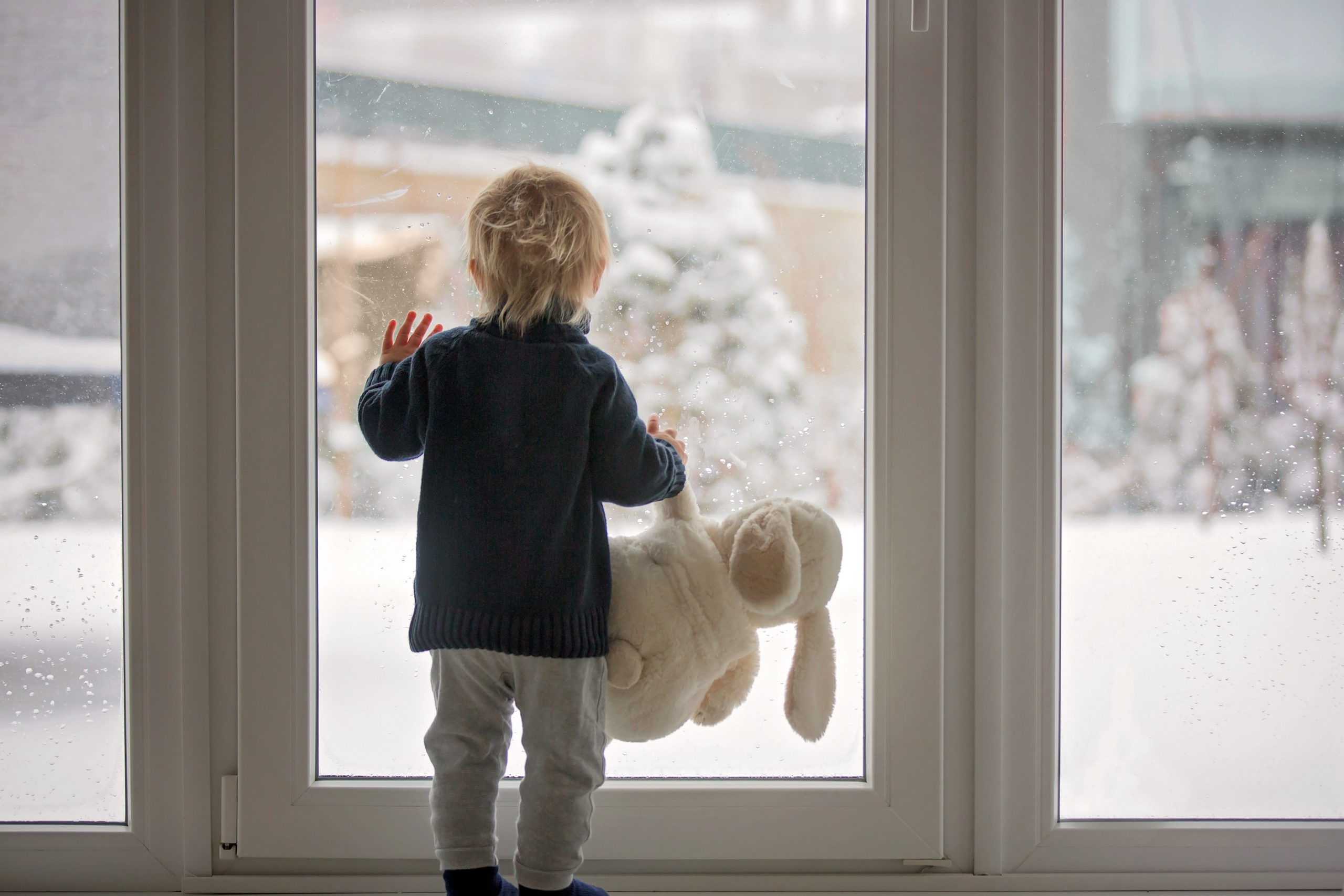 Young Boy Holding A Stuffed Bunny Rabbit In Front Of A Glass Door Looking Out At The Snow