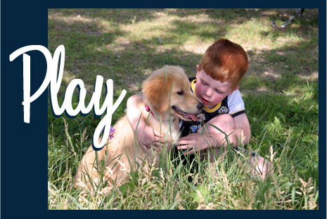 Young red headed boy playing with is dog in the grass with the word Play in white on the picture
